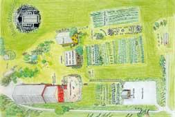 Oversiktskart over Auen urtegård som viser mangfoldet på gården.