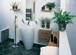 Med planter på badet kan du skape en avslappet atmosfære og en grønn oase. Foto: Flora Dania
