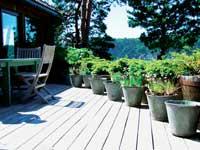 Bak huset er det to solrike og lune terrasser.