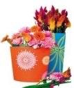 Foto: Flower Council