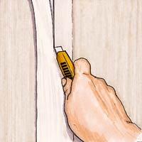 illustration: Jan Pasternak