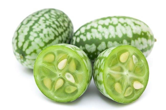 Cucamelonen er sommerens mest bedårende frugt