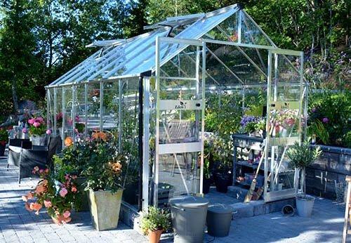 Finn drivhus til ditt budsjett - under 25.000kr