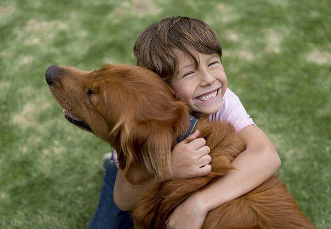 Golden Retriever bliver omfavnet af dreng.