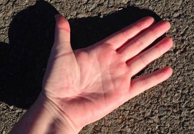 Dette trick afslører om asfalten er for varm for din hund