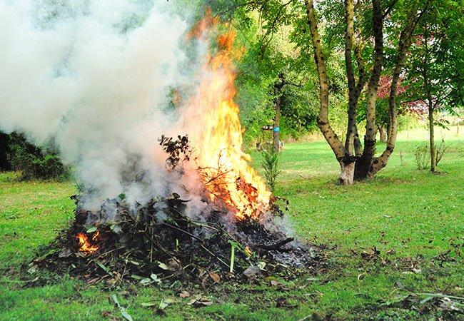 Afbrænding af haveaffald.