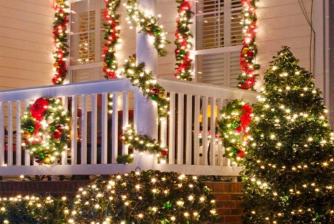 Julebelynsing på busk