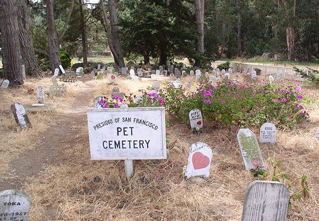 Kæledyr ikke begravet i haven, men på gravplads for kæledyr i USA.