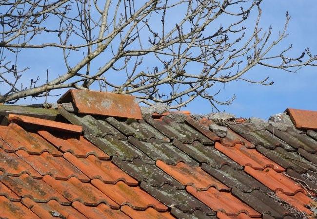 SÅ mange boligejere bekymrer sig om klimaforandringerne