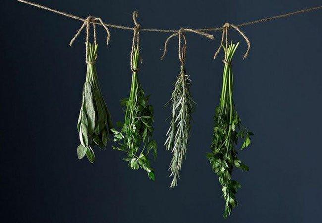 Krydderurter, der hænger til tørre på snor.