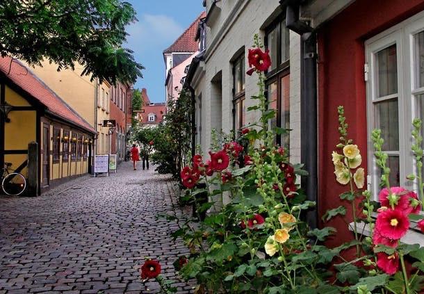 Guide: Derfor skal du besøge Odense