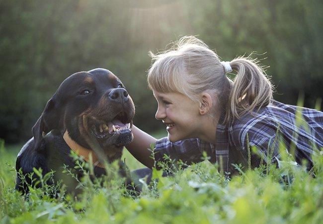 Rottweiler med barn.