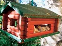 Småfuglene har det ofte tøft om vinteren og vi kan hjelpe dem med mat.