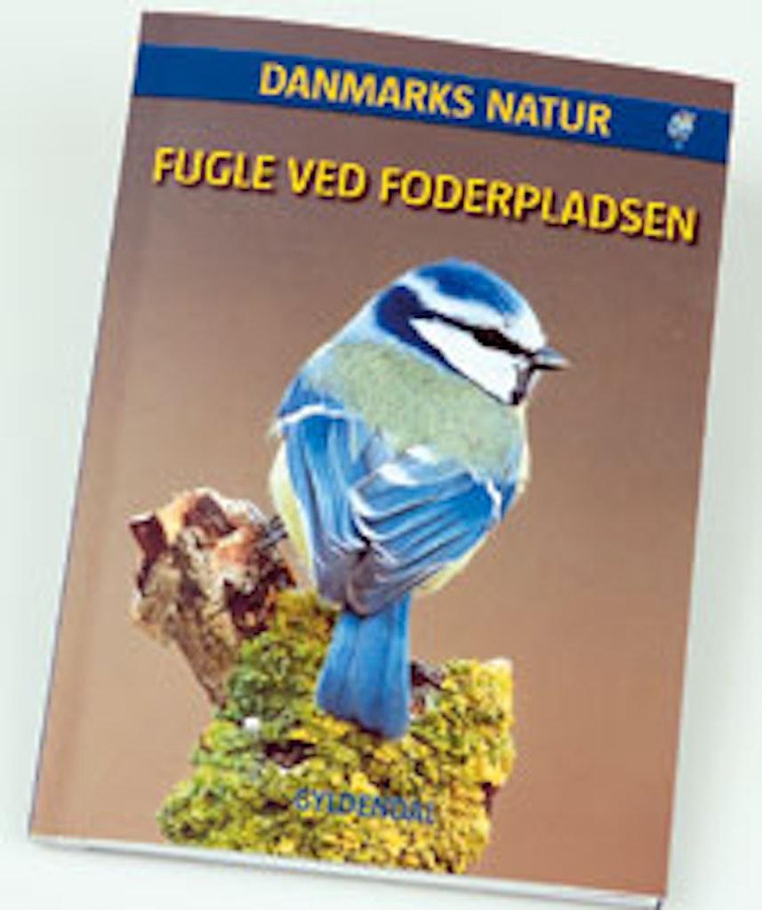 Fuglebog om de forskellige fuglearter
