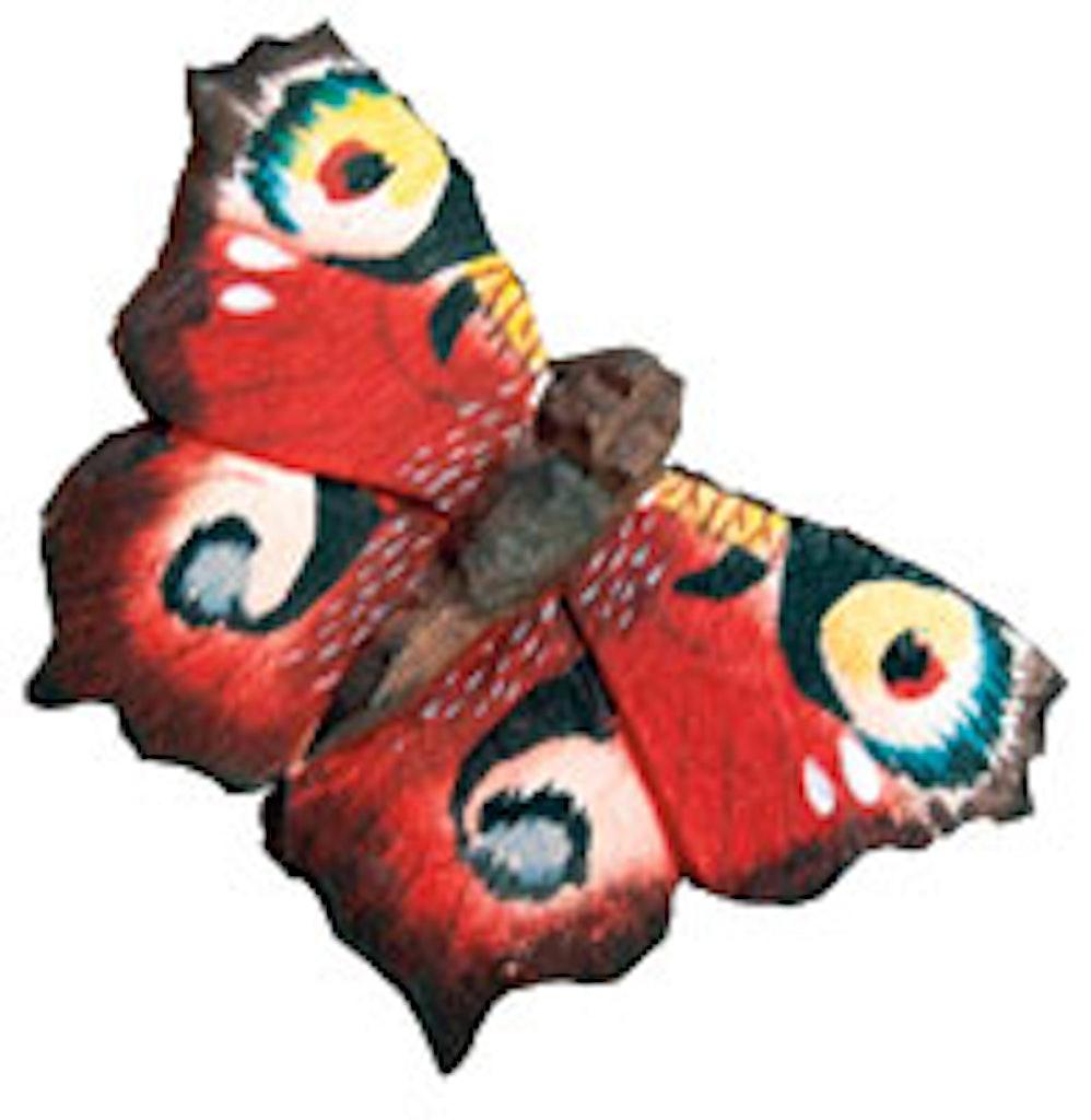 Håndmalet sommerfugle af træ